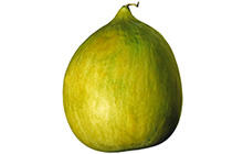 Crenshaw Melons