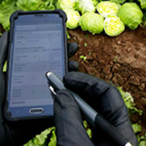 Markon's Mobile Inspector App