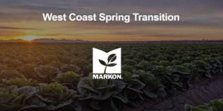 West Coast Spring Transitions